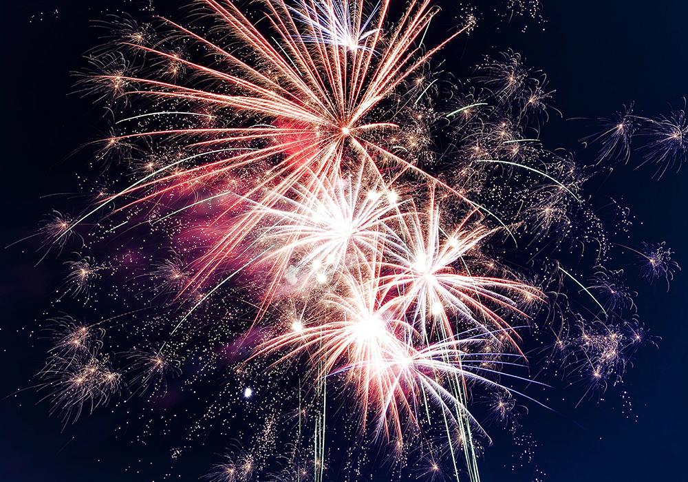 Keep Pets Safe in Firework Season